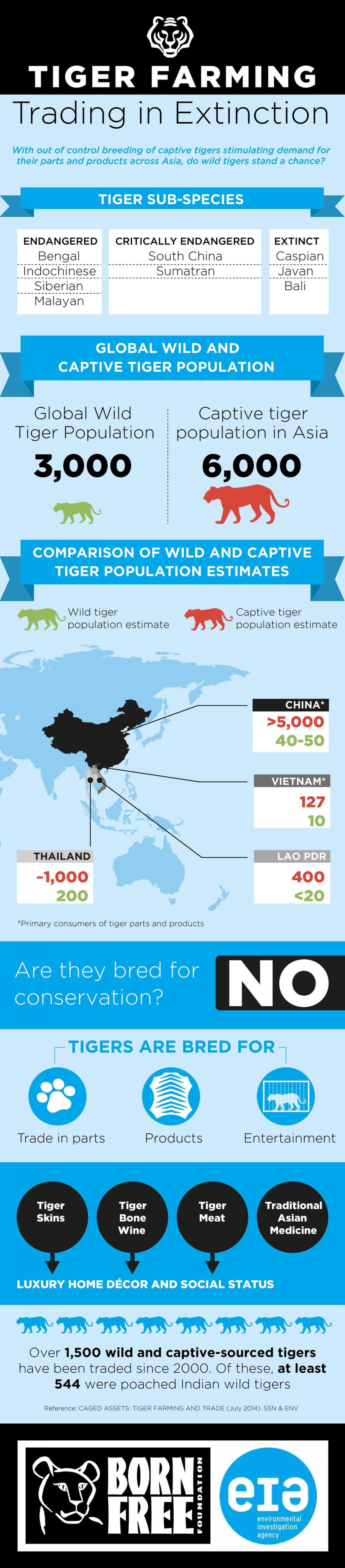 Tiger Farming: Trading in Extinction Infographic