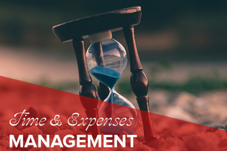 Time & Expenses Management System | Software - QuickStart Admin Infographic