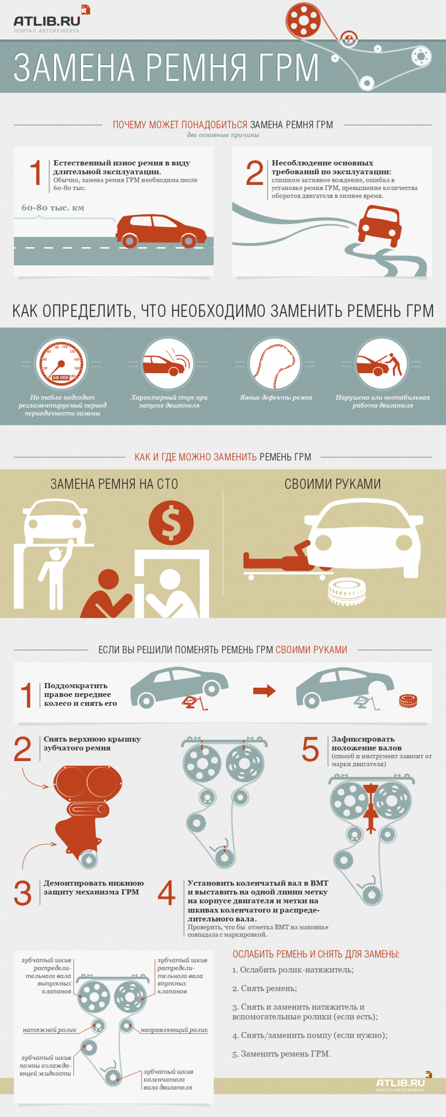 Timing belt Infographic