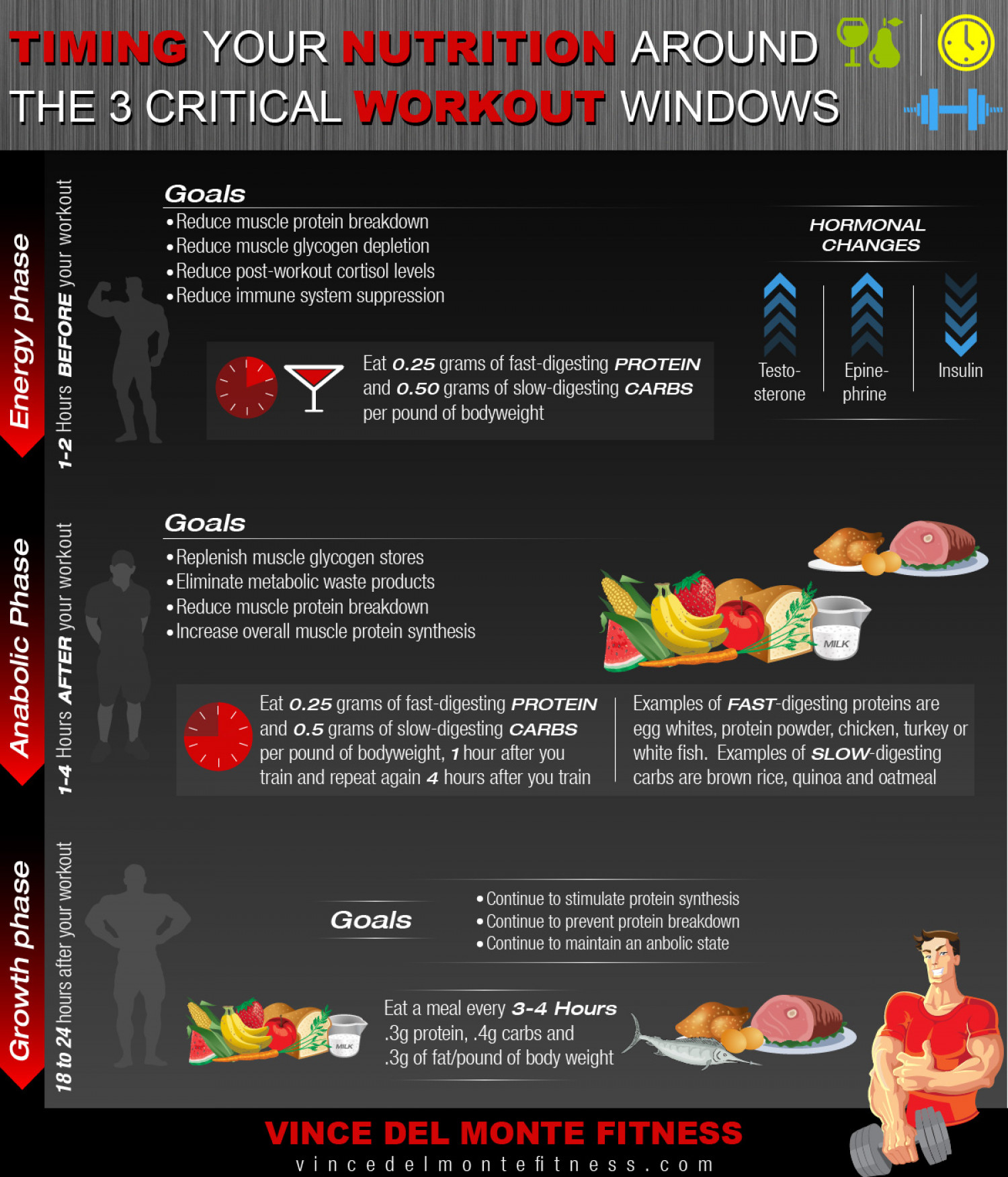 Timing Your Nutrition Around The 3 Critical Workout Windows Infographic