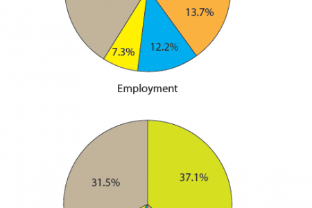 Timor-Leste : The formal private sector in 2010 Infographic