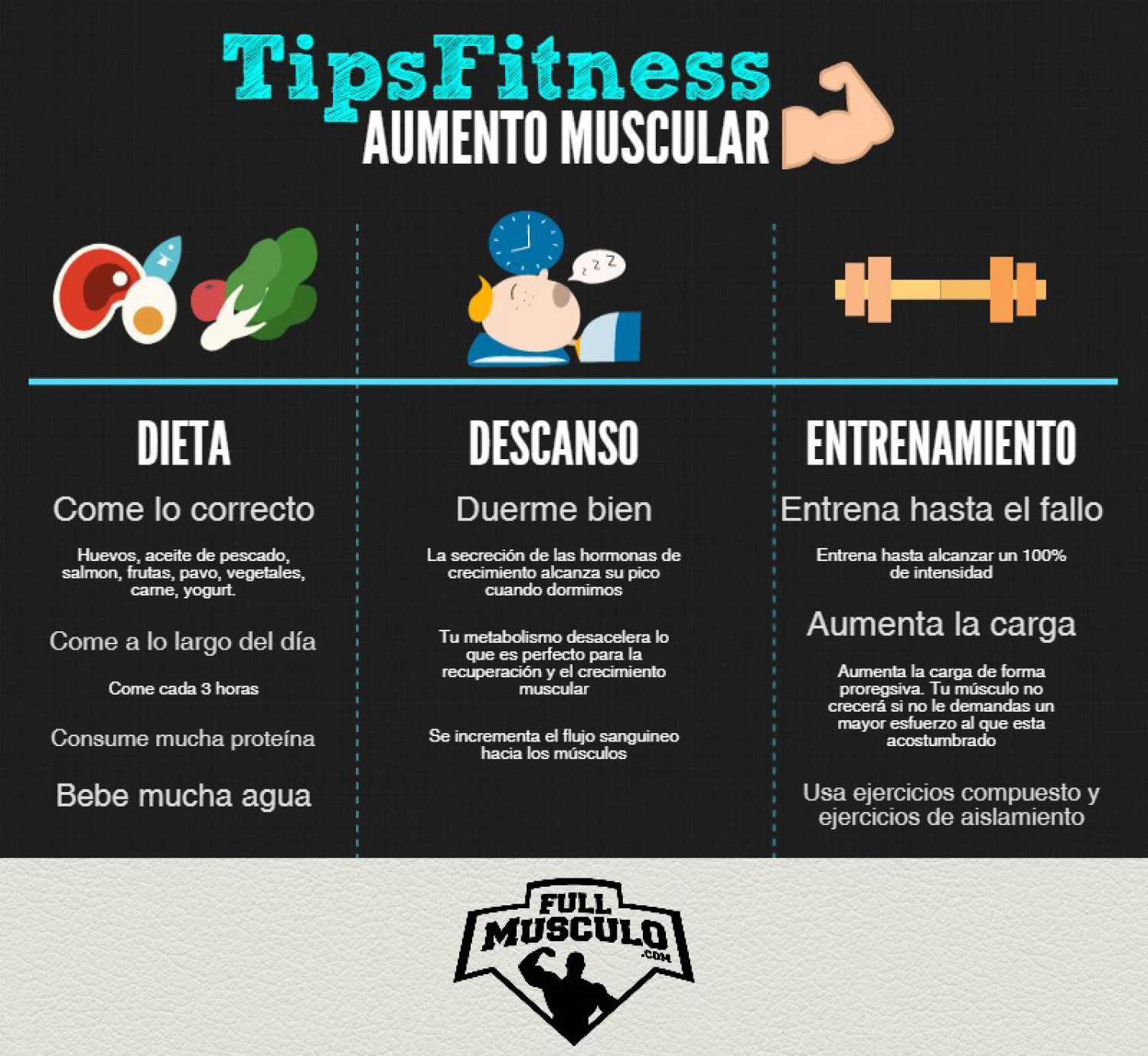 Tips fitness para aumentar masa muscular Infographic