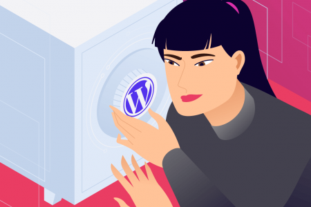 Tips for a Secure WordPress Website Infographic