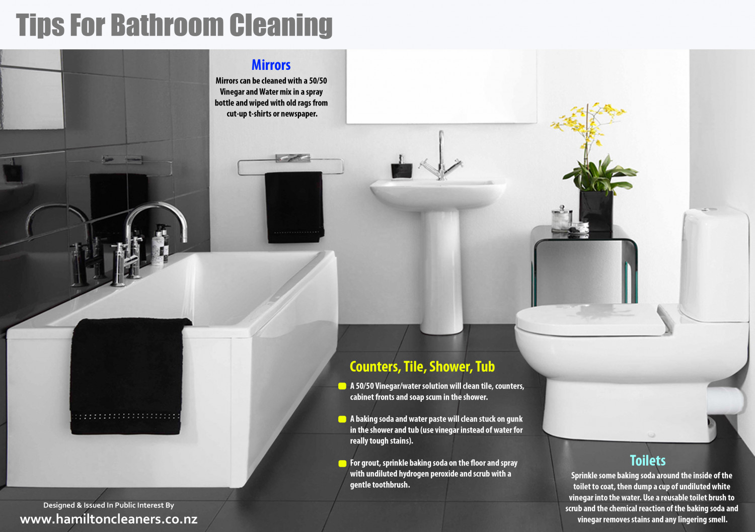Tips For Bathroom Cleaning Visually - Bathroom cleaning tips vinegar