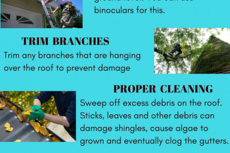 Tips for Maintaining Cedar Roof Infographic