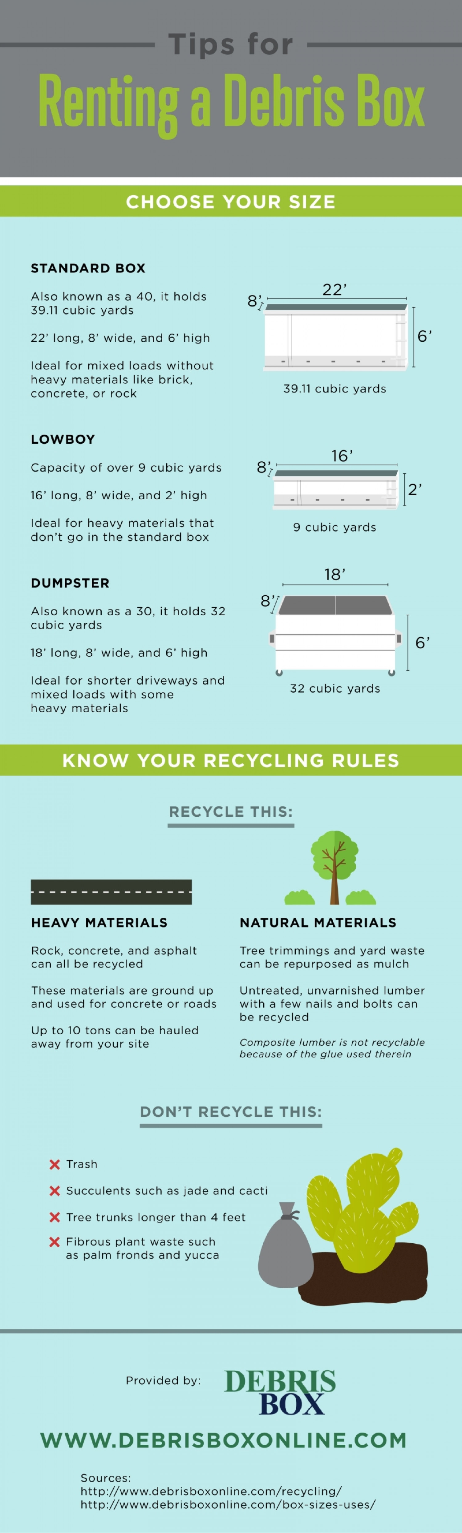 Tips for Renting a Debris Box  Infographic