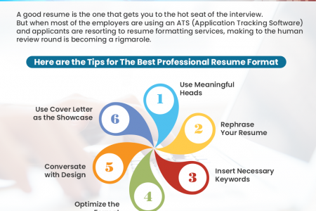 Tips For The Best Professional Resume Format Infographic