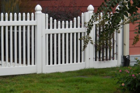 Tips To Maintain Your Wooden Fence Infographic
