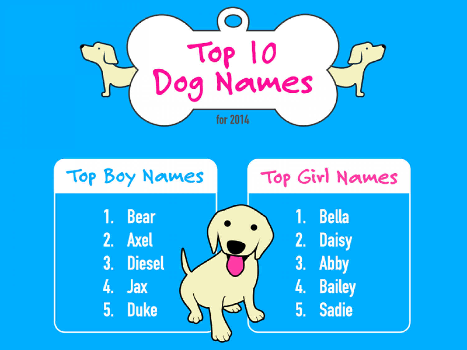 Top 10 Dog Names for 2014 Infographic