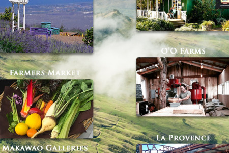 Top 10 Things to Do in Upcountry Maui Infographic