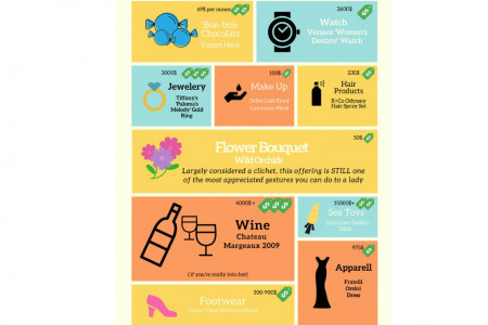 Top 12 gifts for luxury companions Infographic