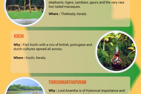 Top 12 Places to Visit in Kerala Infographic