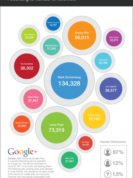 Top 15 Google+ Users Infographic