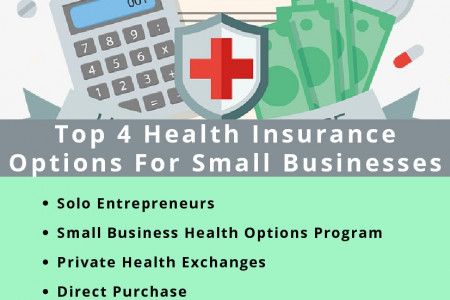 Top 4 Health Insurance Options For Small Businesses Infographic