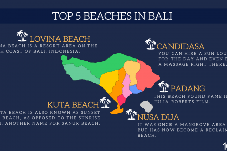 TOP 5 BEACHES IN BALI Infographic