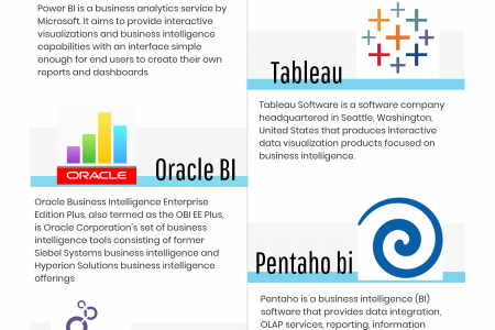 Top 5 BI (Business Intelligence) Application 2019 | Taction Software LLC Infographic