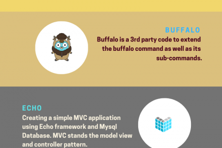 Top 5 frameworks for development in golang Infographic