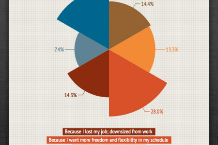 Top 6 Reasons Why People  Go Into Freelancing Infographic