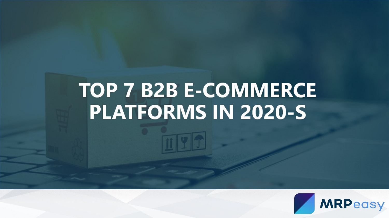 Top 7 B2B E-Commerce Platforms in 2020-s Infographic