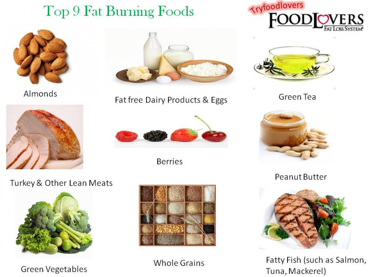 Top 9 Fat Burning Foods Visual Ly