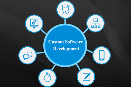 Top Custom Software Development Company  Infographic