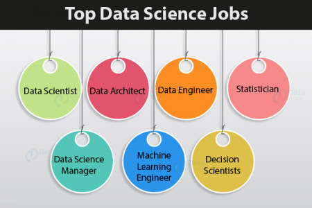 Top Data Science Jobs & Roles for 2019 Infographic