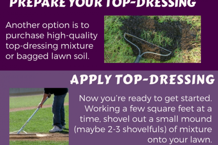 Top Dressing Method For Your Lown - Make it Better Infographic