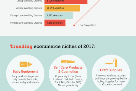 Top Ecommerce Niches of 2017 Infographic