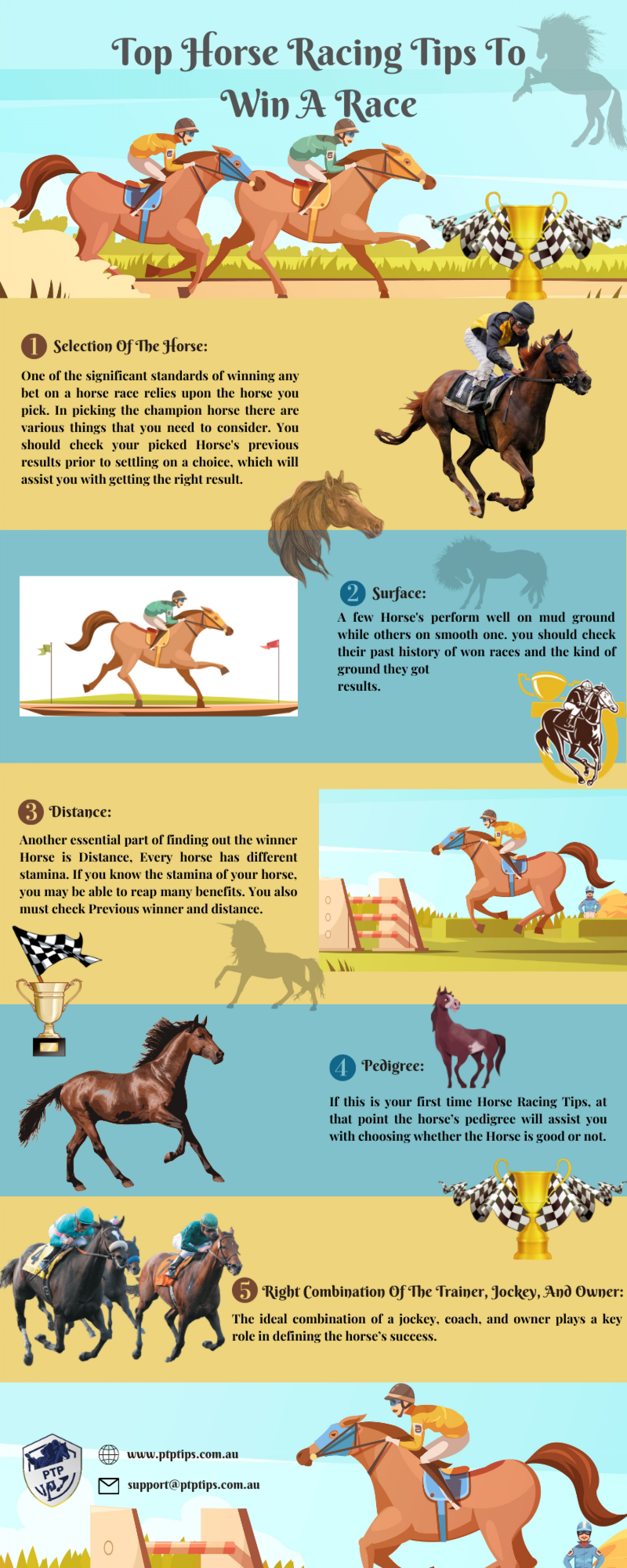 Top Horse Racing Tips To Win A Race Infographic