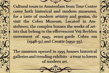 Top Museums in Amsterdam Infographic