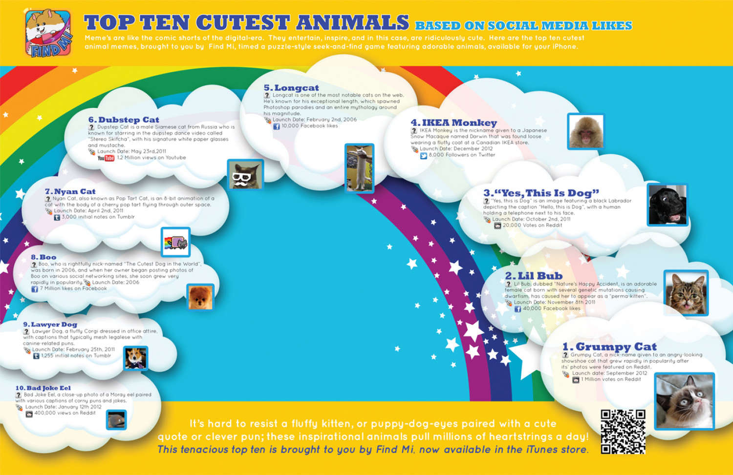 Top Ten Cutest Animals based on Social Media Likes Infographic