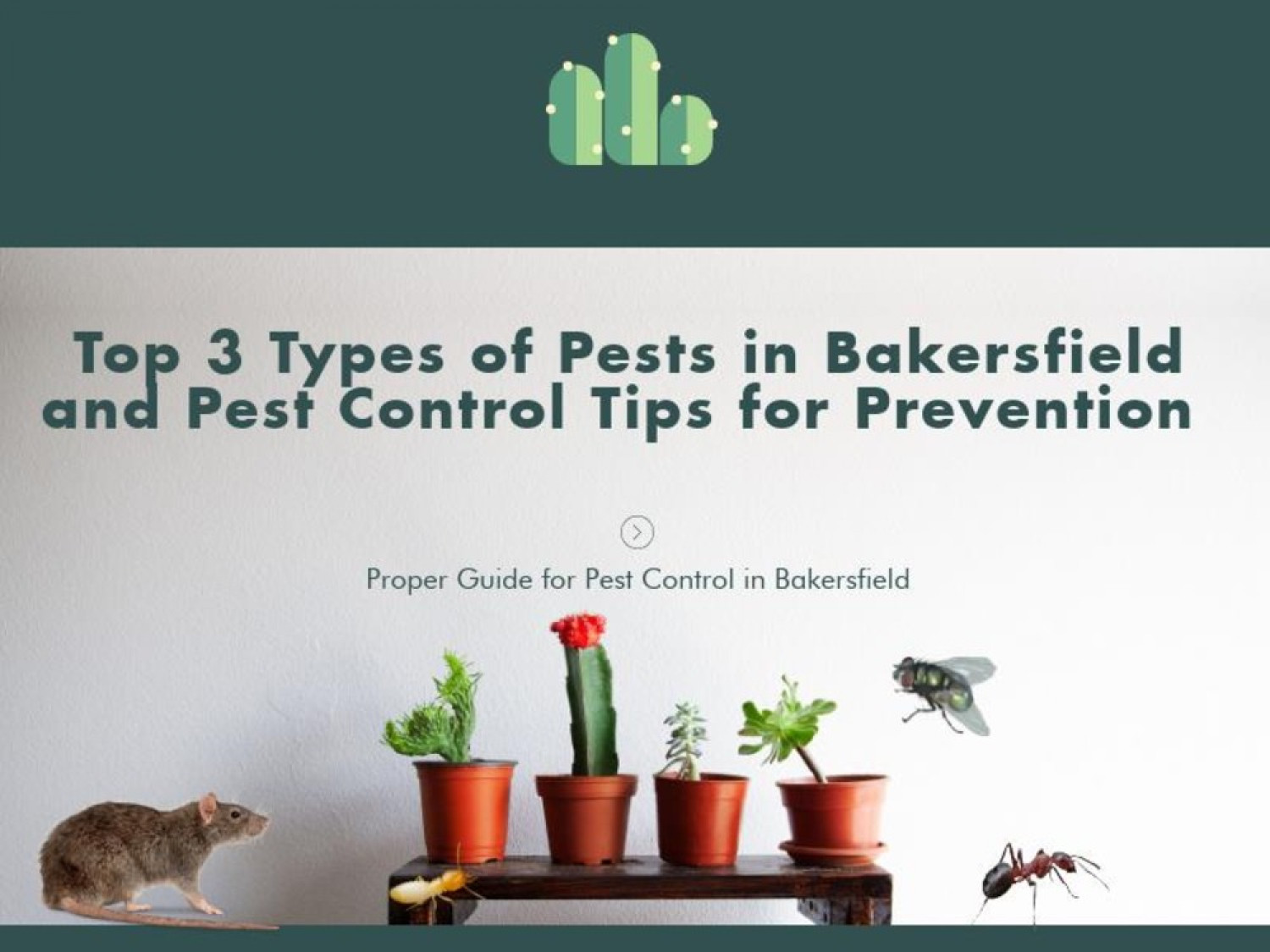 Top Three Types of Pest and How to Control them | Bakersfield Pest Control  Infographic