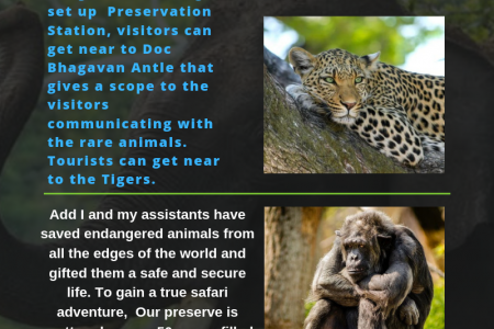 Tourist Attractions in south Carolina Myrtle Beach Safari Reviews Infographic