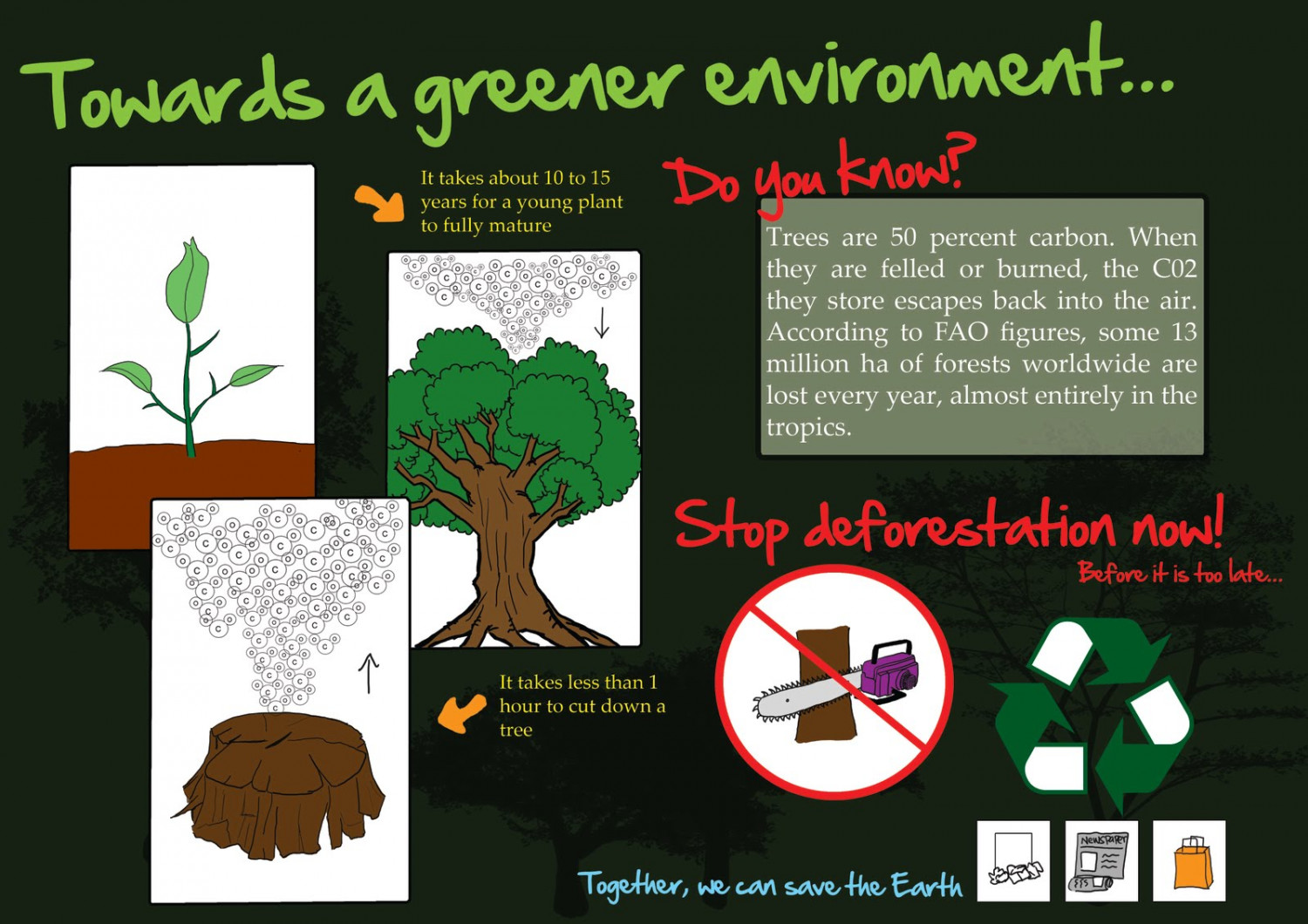 Towards a Greener Environment Infographic