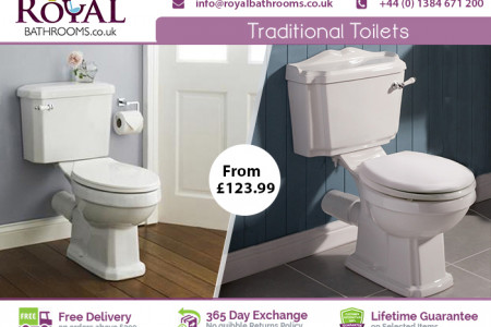 Traditional Toilet available for Sale Infographic