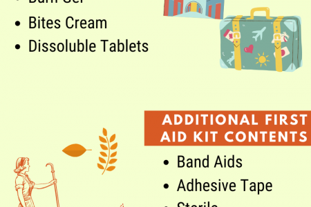 Travel First Aid Kit Essentials!  Infographic