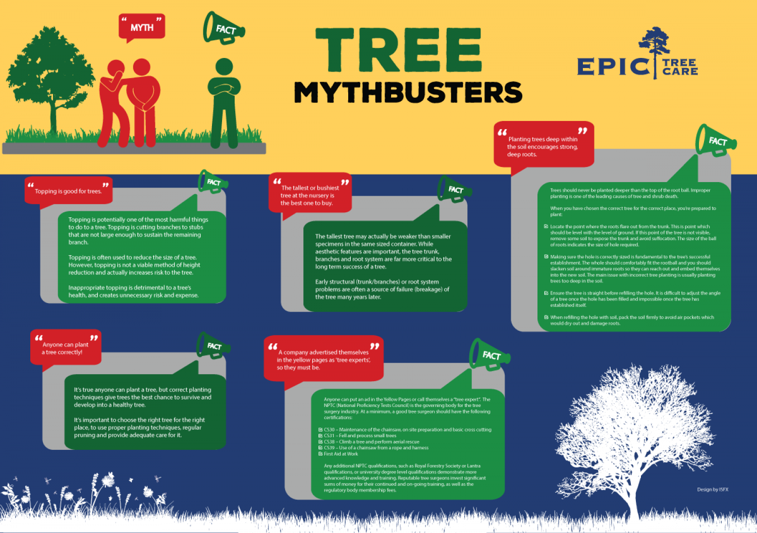 Tree Mythbusters Infographic