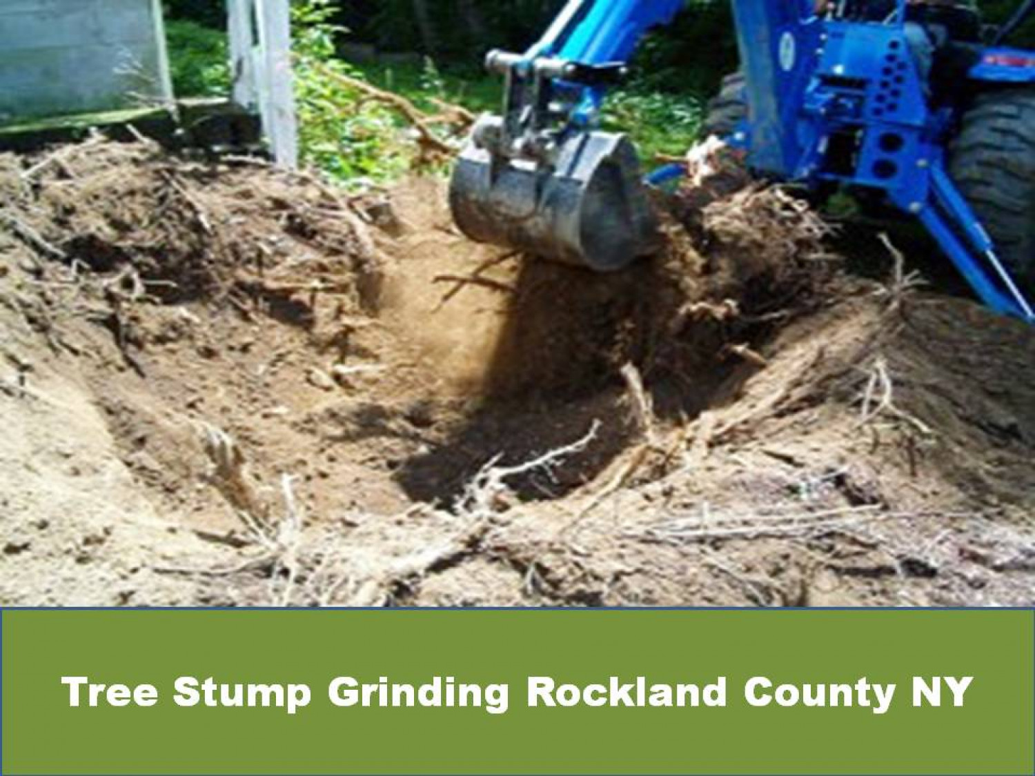 Tree Stump Grinding Rockland County NY Infographic