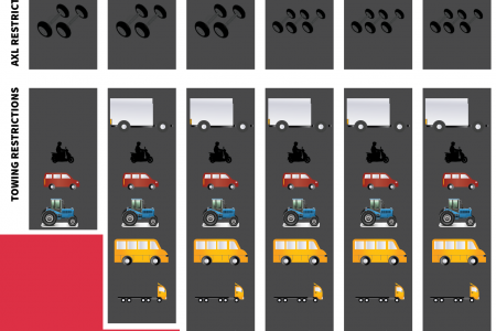 Truck Driving License  Infographic