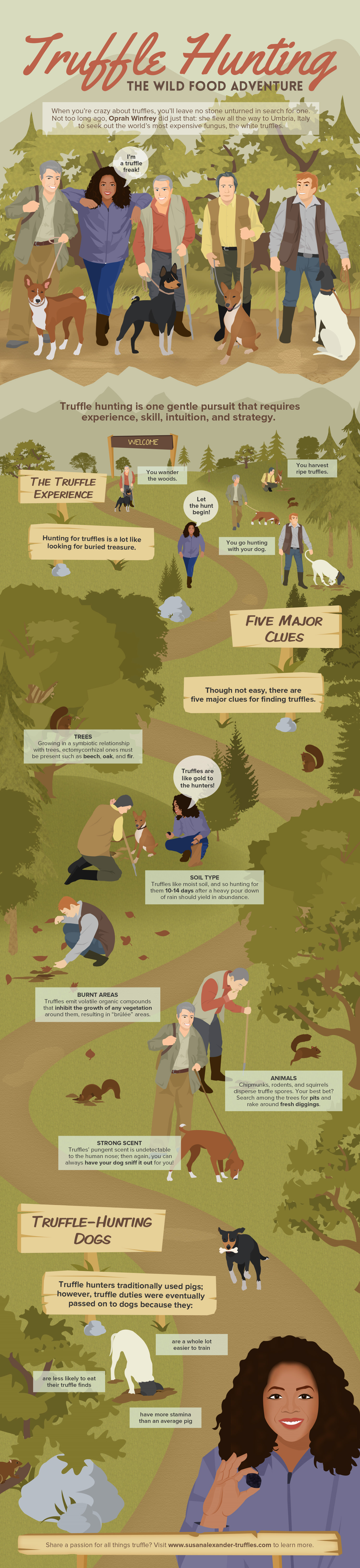 Truffle Hunting - The Wild Food Adventure Infographic