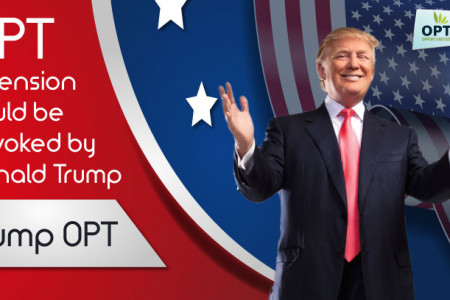 Trump on Opt  Infographic