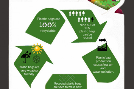 Truth About The Plastic Carrier Bags Infographic