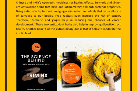Turmeric and Ginger – Best Antioxidant Herbs for Digestive Tract Health Infographic