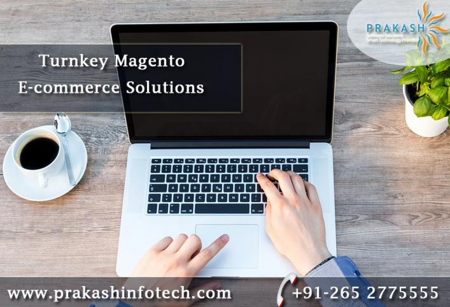 Turnkey Magento e-commerce solutions Infographic
