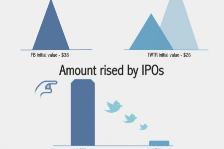 Twitter IPO vs Facebook IPO Infographic Infographic