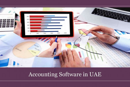 Types of Accounting Softwares in UAE Infographic
