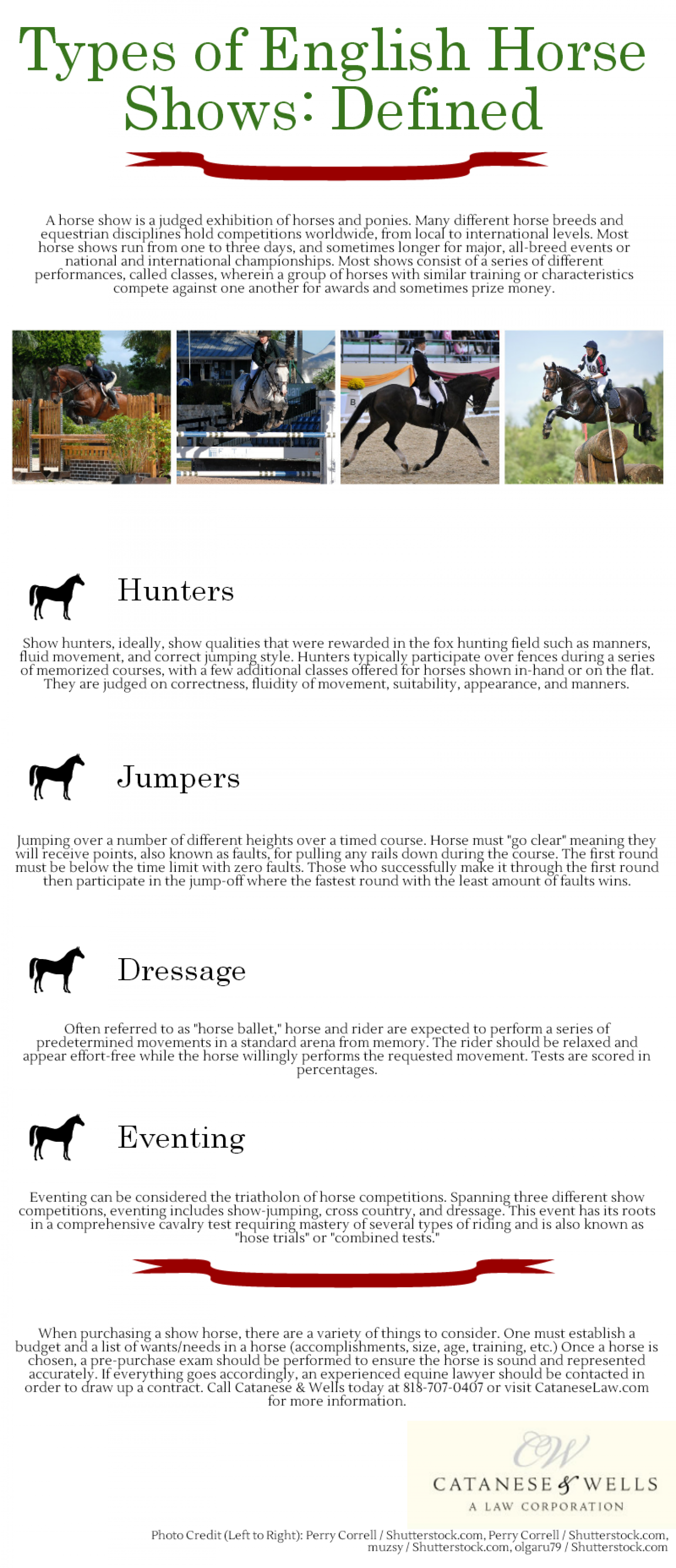 Types of English Horse Shows: Defined Infographic