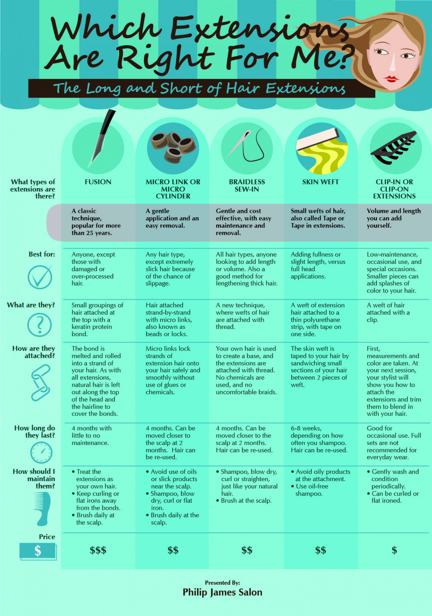 Which Extensions Are Right For Me? Infographic