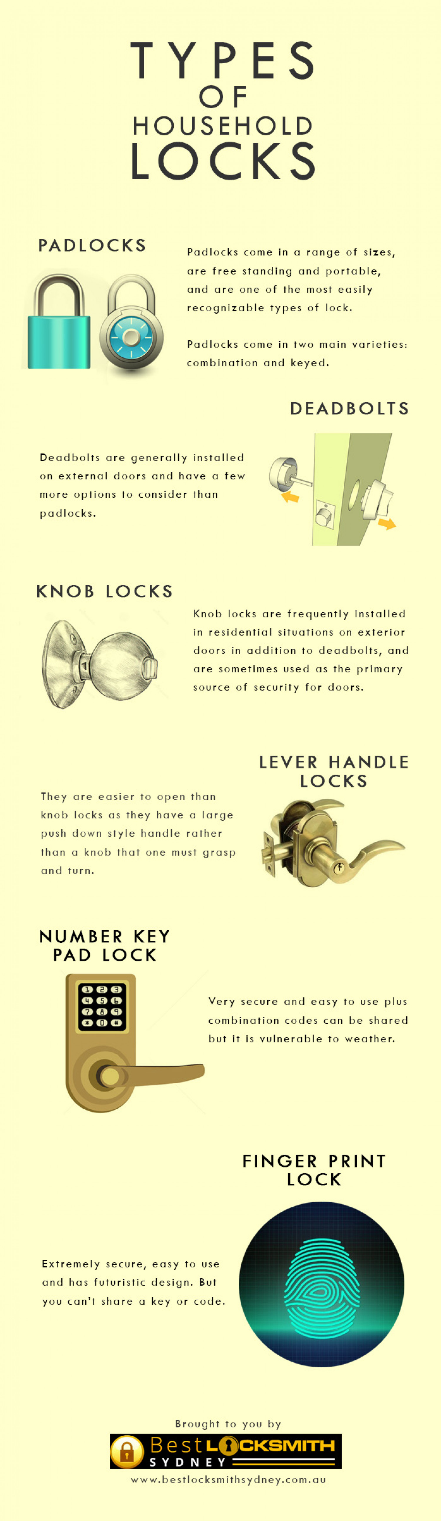 Types of Household Locks Infographic
