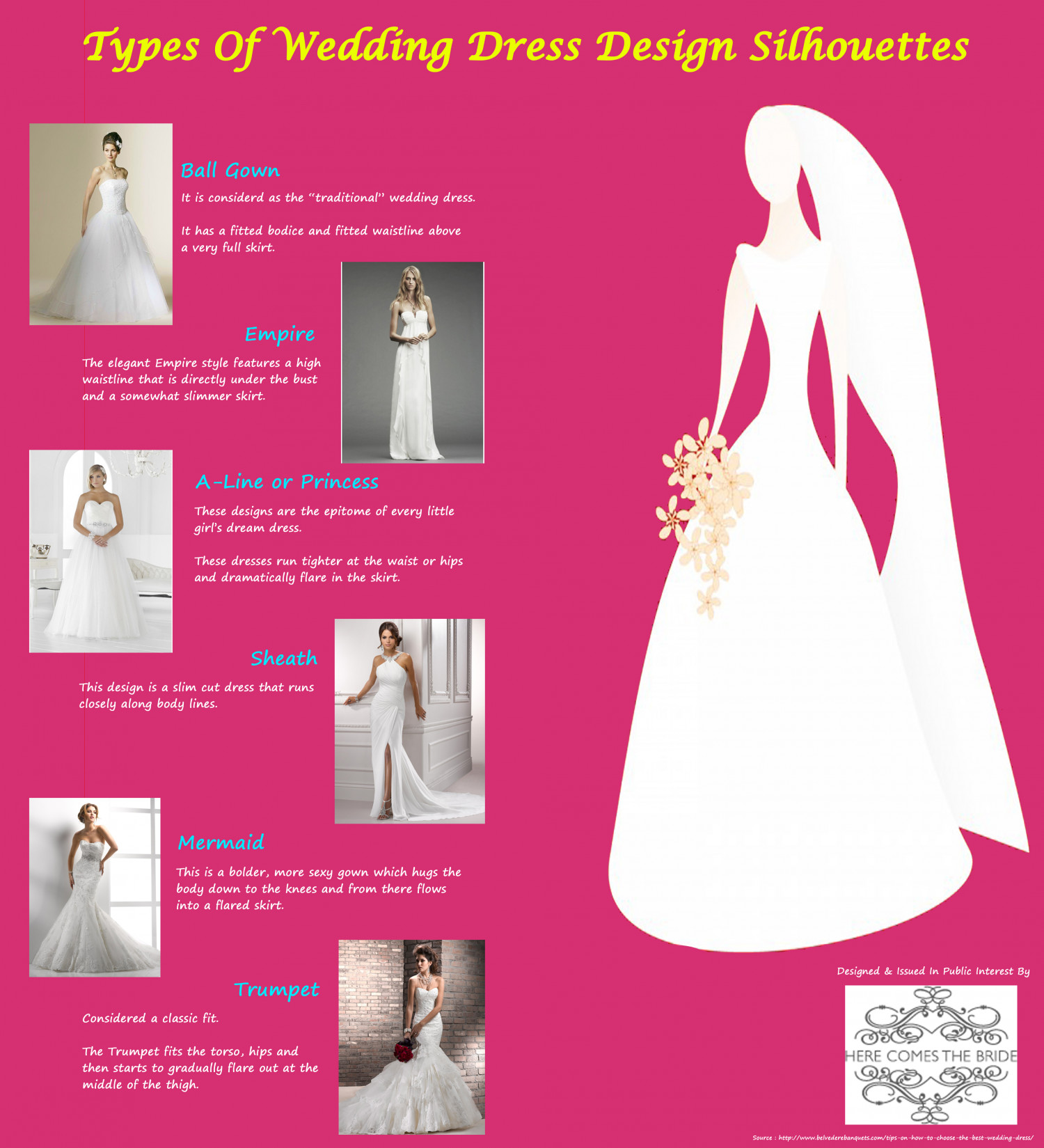 Types of wedding dress design silhouettes visual types of wedding dress design silhouettes infographic junglespirit Image collections